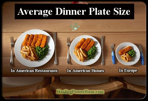 average-dinner-plate-size